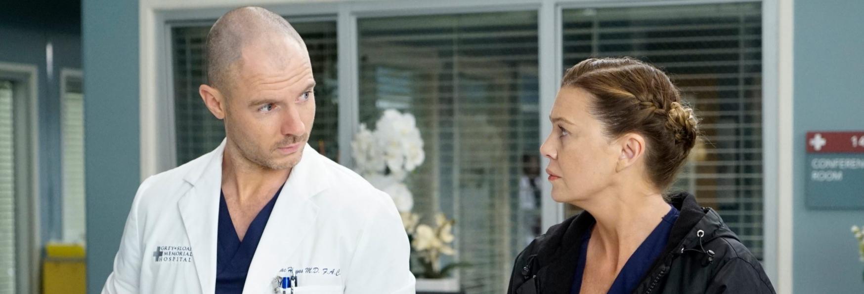 Grey's Anatomy 17: le Novità nel Cast della nuova Stagione